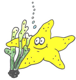 Smiley, a yellow cartoon Starfish, holding onto a piece of coral.